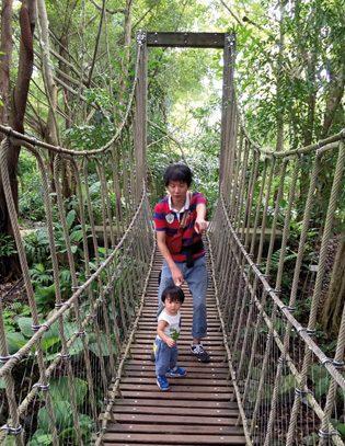 ボタニックガーデンの「ジェイコブ・バラス・チルドレンズ・ガーデン」にある吊り橋