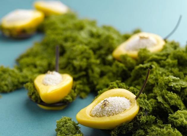 mango-afternoon-tea-web